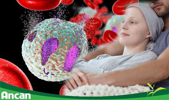 [Hỏi & Đáp]: Ung thư máu có chữa khỏi không?